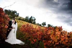 balgownie estate wedding yarra valley 300x200 Photography & Wedding Expo Balgownie Estate